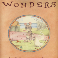 The Room of Wonders